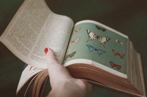 libros recomendados 2012